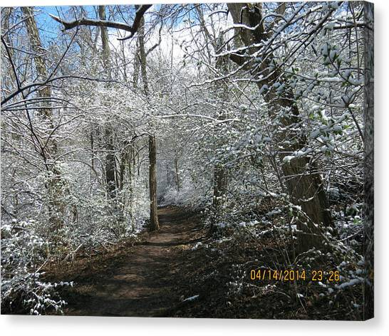 Late Season Snow Fall Canvas Print