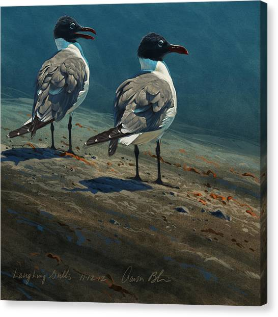 Sea Birds Canvas Print - Laughing Gulls by Aaron Blaise