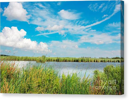 Lauwersmeer National Park. Canvas Print