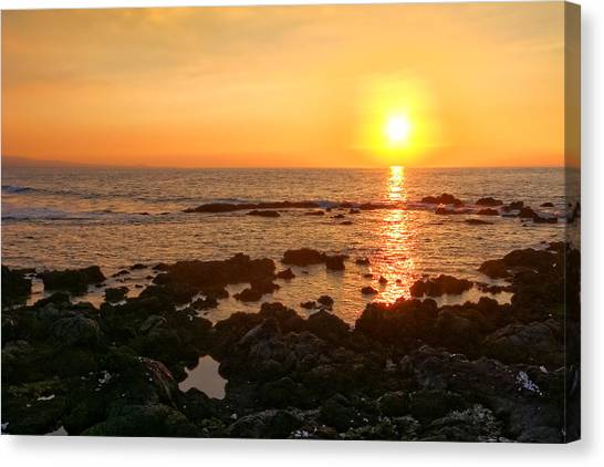 Lava Rock Beach Canvas Print