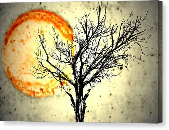 Lava Sky Canvas Print