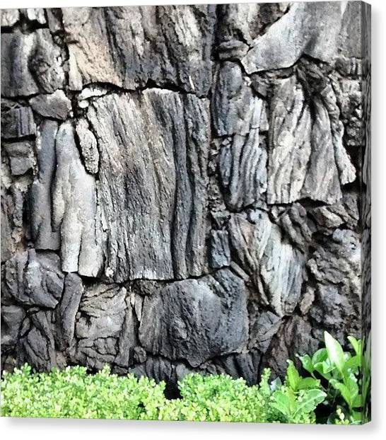 Lava Canvas Print - #lava #wall #fence #landscaping #palmas by S N