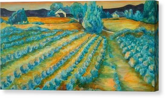 Lavendar Fields Canvas Print by Bianca Romani
