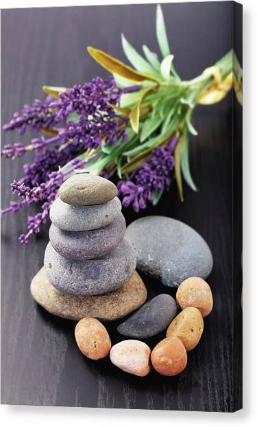 Canvas Print - Lavender Aromatherapy by Wladimir Bulgar/science Photo Library