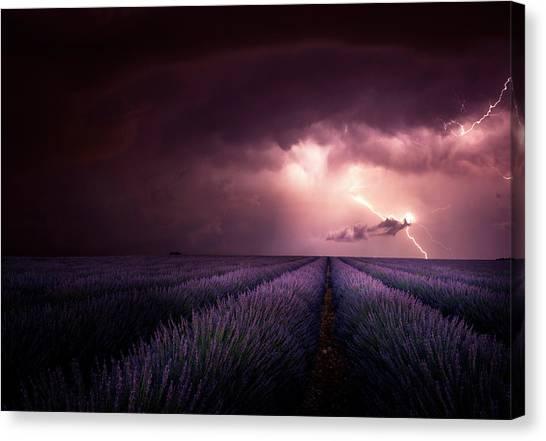 Thunderstorms Canvas Print - Lavender Fragrance by Franz Schumacher