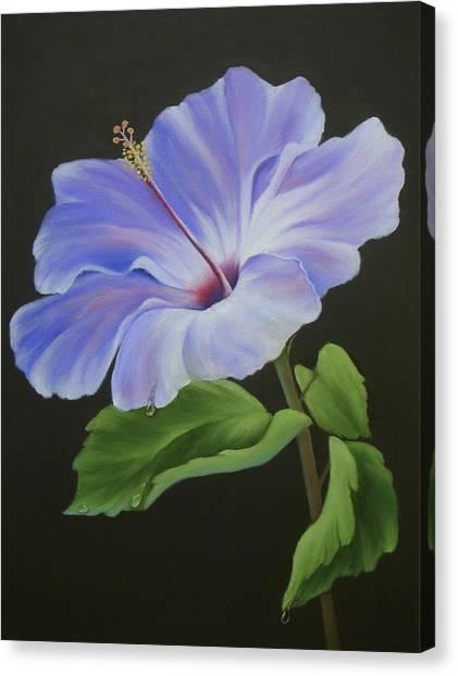 Lavender Hibiscus Canvas Print by Francine Henderson