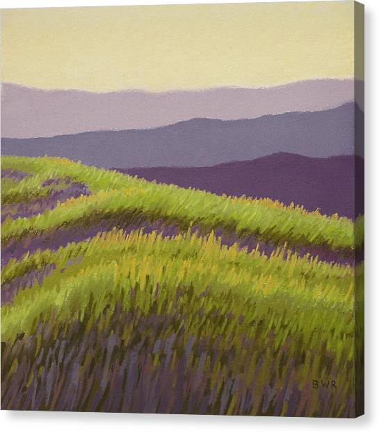 Lavender Hills Forever Canvas Print by Bruce Richardson