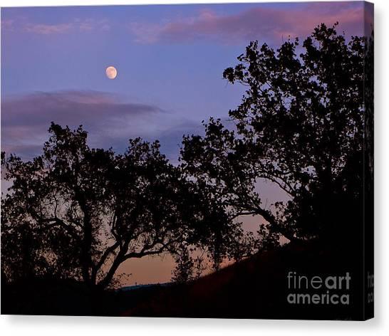 Lavender Moon Twilight Canvas Print