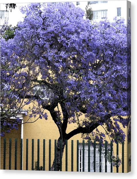 Lavender Tree Canvas Print by Patricia Januszkiewicz