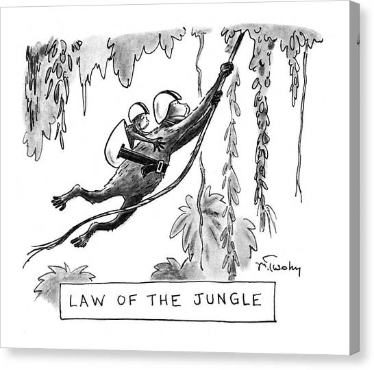 Rope Canvas Print - Law Of The Jungle by Mike Twohy