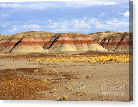 Layers And Landform - The Painted Desert Canvas Print by Douglas Taylor