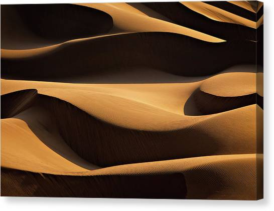 Iranian Canvas Print - Layers by Mohammadreza Momeni