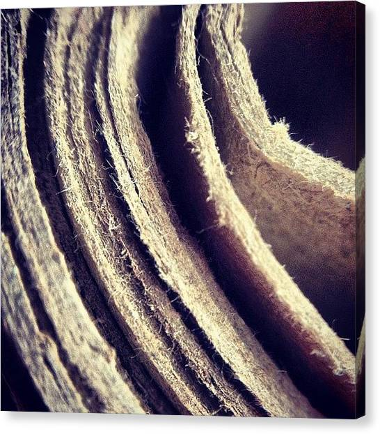 Surface Canvas Print - Layers by Nic Squirrell