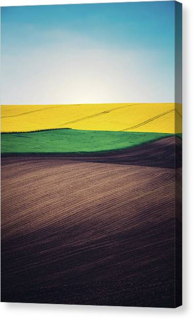 Layers Of Colorful Field Canvas Print by Borchee