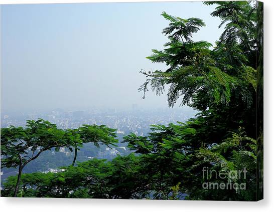 Layers Of Tree Canvas Print