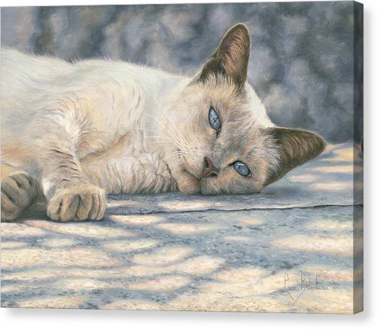 Siamese Canvas Print - Lazy Afternoon by Lucie Bilodeau