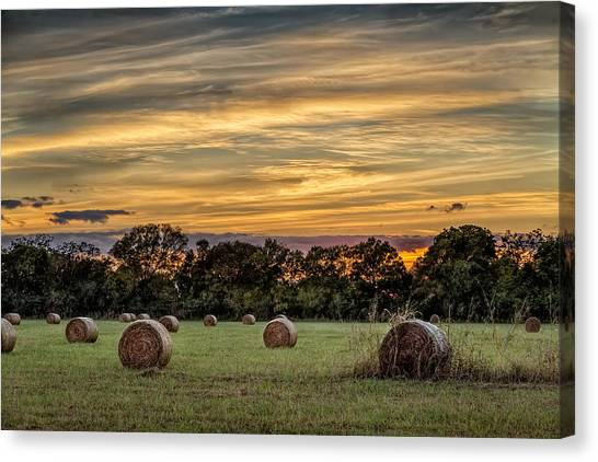 Lazy Hay Bales Canvas Print
