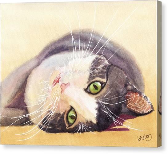 Lazy Kitty Canvas Print
