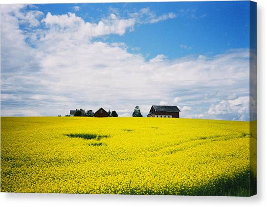 Canvas Print - Lazy Summer Day by Christine Rivers