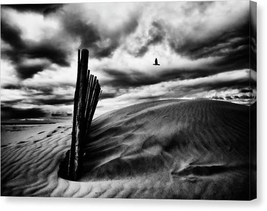Sand Dunes Canvas Print - Le Cri Du Goa?land, Le Soir, Au-dessus Des Canisses by St?phane Pecqueux