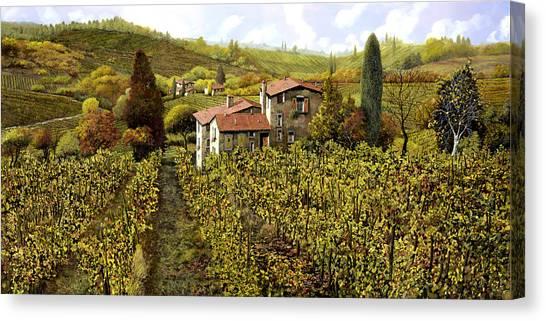 Vineyard Canvas Print - Le Vigne Toscane by Guido Borelli