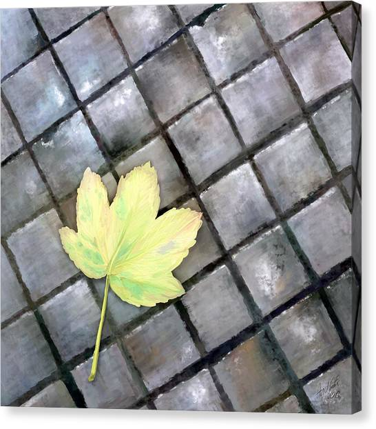 Leaf On Ground Canvas Print by Ondrej Kollar