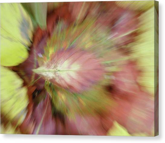 Canvas Print featuring the photograph Leaf On Leaves 2 by Bernhart Hochleitner