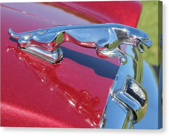 Leaper Hood Ornament On Red Jaguar Canvas Print by Mark Steven Burhart