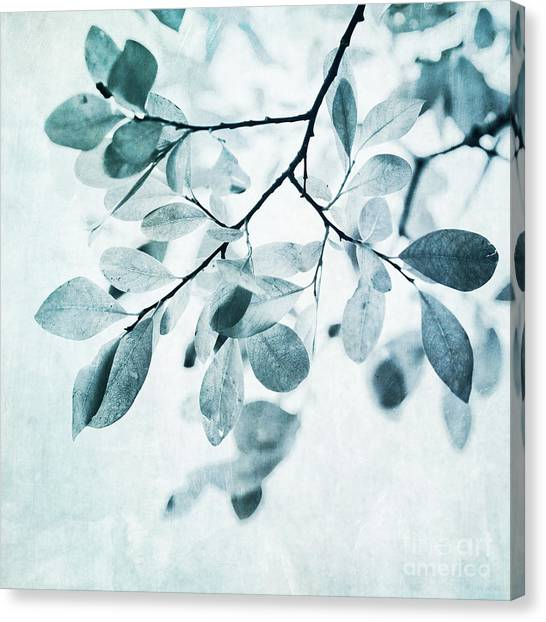 Squares Canvas Print - Leaves In Dusty Blue by Priska Wettstein