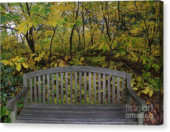 Leaving In The Fall Canvas Print by Geri Glavis
