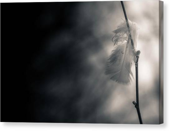Decay Canvas Print - Left Behind by Hatcat Photography