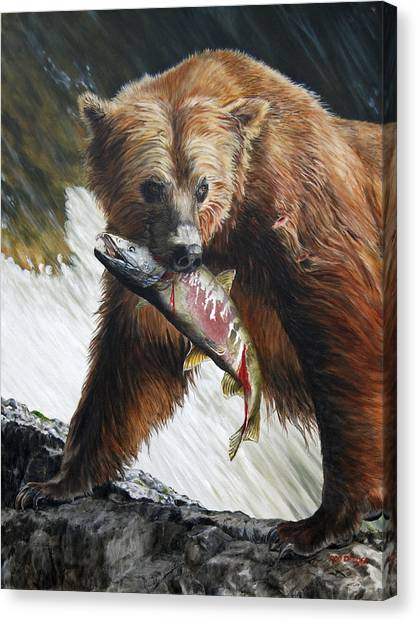 Brown Bears Canvas Print - Legend Of The Falls by Dreyer Wildlife Print Collections