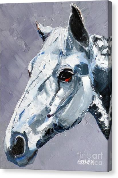 Legend - Sport Horse Canvas Print