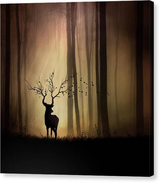 Shadows Canvas Print - Legendes D'automne by Sebastien Del Grosso