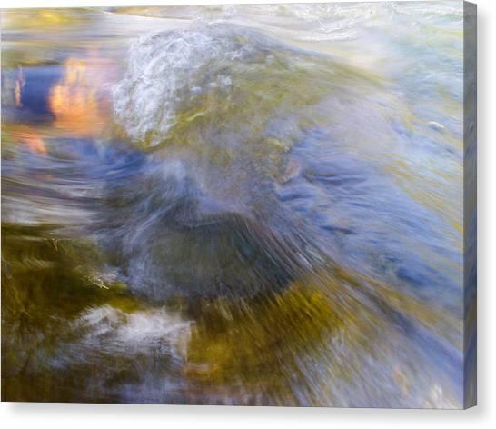 Leibert 20 Canvas Print