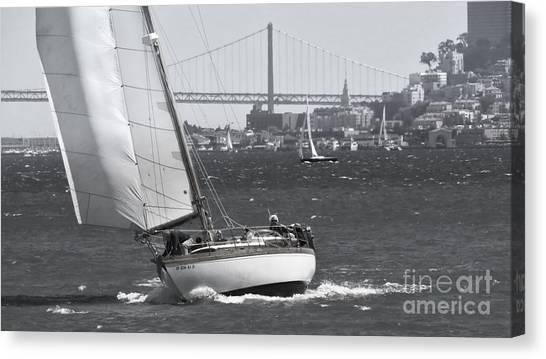 Leisure Sailor Canvas Print