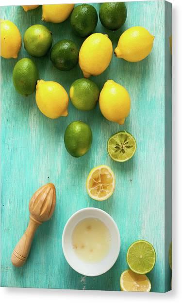 Lemon And Lime Canvas Print