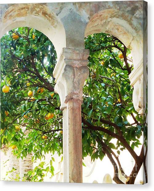 Lemon Tree Very Pretty Canvas Print