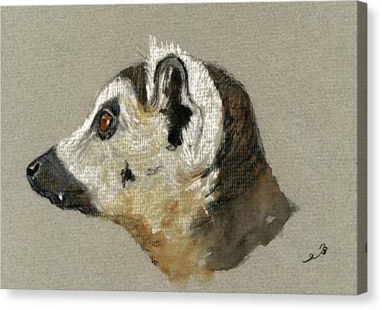 Rainforests Canvas Print - Lemur Head Study by Juan  Bosco