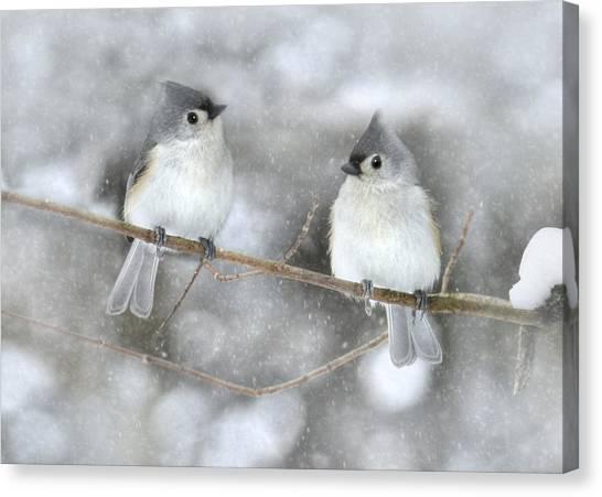 Titmice Canvas Print - Let It Snow by Lori Deiter
