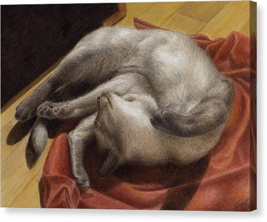 Siamese Canvas Print - Let Sleeping Kitties Lie by Pat Erickson