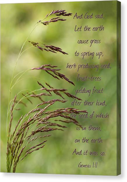 Let The Earth Bring Forth Grass Genesis Canvas Print