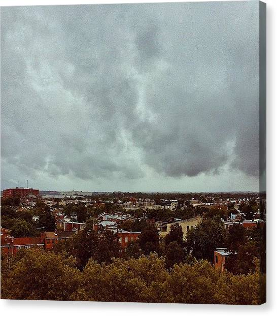 Baltimore Orioles Canvas Print - let The Rain Come Down And Wake My by Olivia Witherite