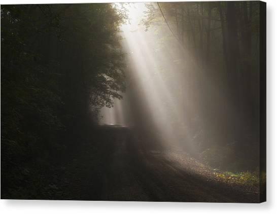 Let The Sun Shine Canvas Print