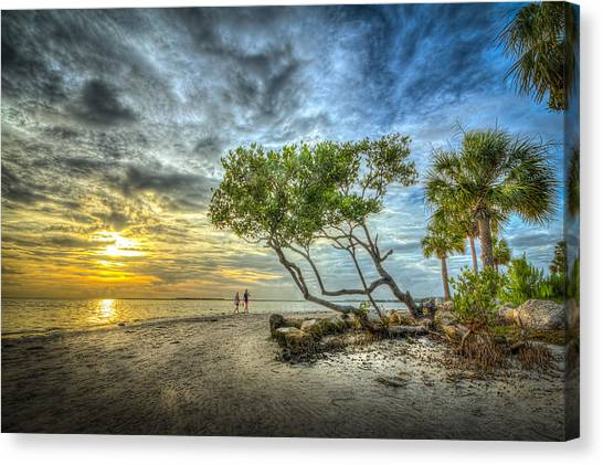 Mangrove Trees Canvas Print - Let's Stay Here Forever by Marvin Spates