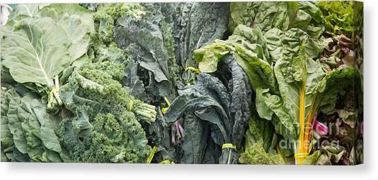 Lettuce Canvas Print - Lettuce by Rebecca Cozart
