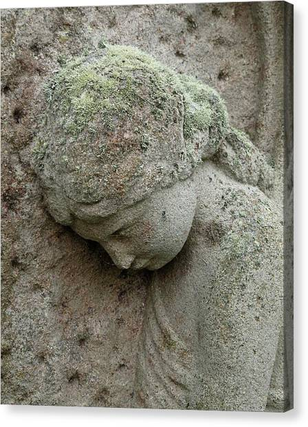 Pollution Canvas Print - Lichen Growing On Gravestone by Cordelia Molloy