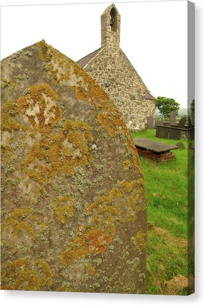 Pollution Canvas Print - Lichen On Gravestone In Unpolluted Air by Cordelia Molloy