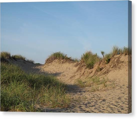 Lieutenant Island Dunes Canvas Print