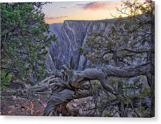 Life And Death At Painted Wall Canvas Print by Eric Rundle